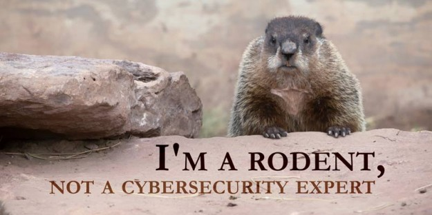 Security Expert Groundhog Day