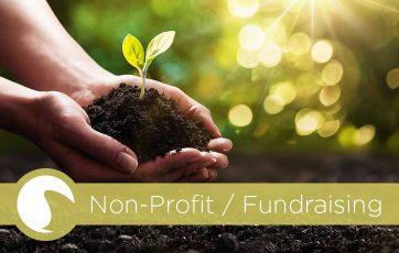 Non-Profit / Fundraising